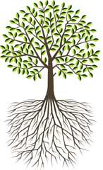 rinj-tree240h